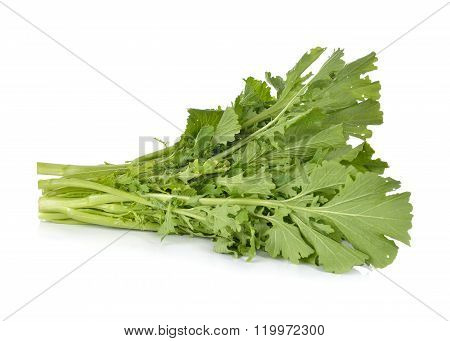 Fresh Turnip Greens On White Background