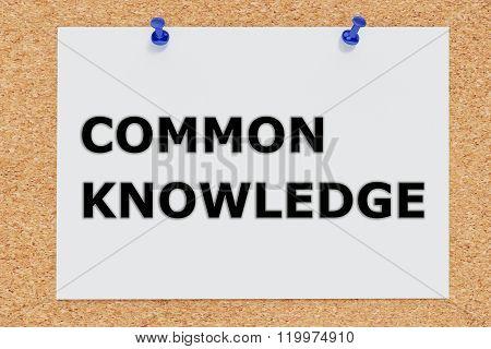 Common Knowledge Concept