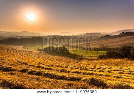 Farmland Hills Landscape