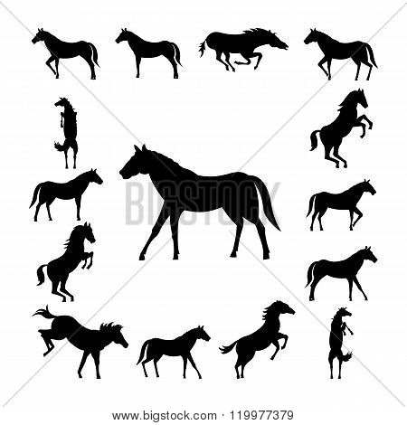 Set wild horse silhouette