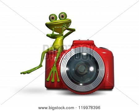 Frog On Camera