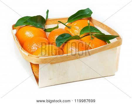 Leaf Clementines In Basket