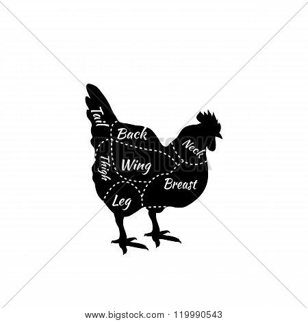 Typographic Chicken Butcher Cuts Diagram