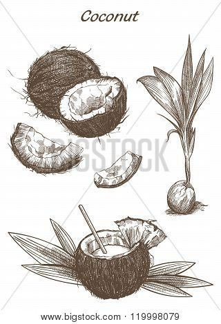 cocktail of coconut milk