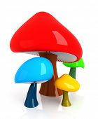 stock photo of shroom  - Mushrooms - JPG