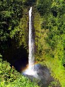 Постер, плакат: Акака падает на большом острове Гавайи