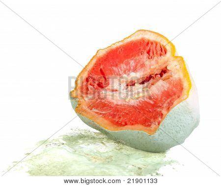 Rotten Grapefruit Half