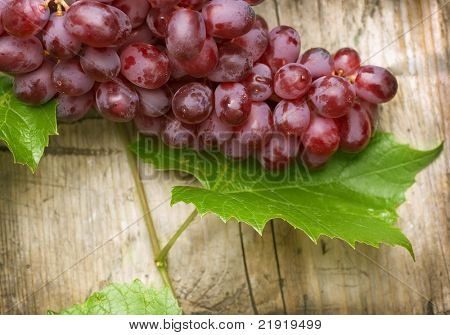 Bunch of grapes over Wood Background