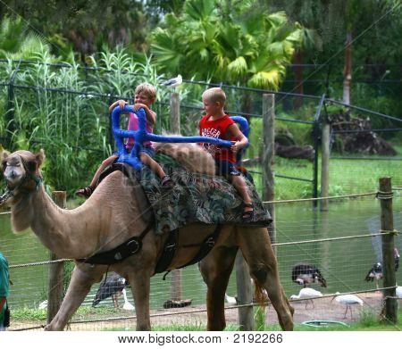 Crianças com o camelo