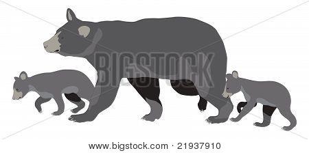 Mama Bear With Cubs