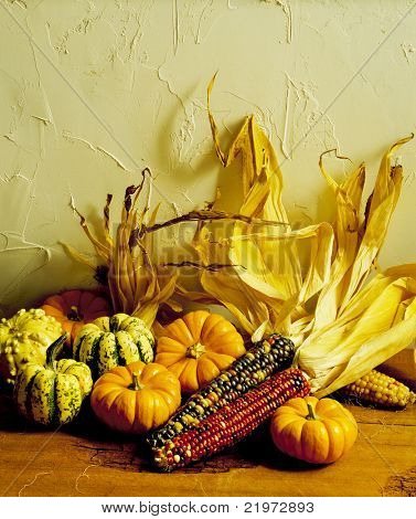 Indian Corn & Gourds
