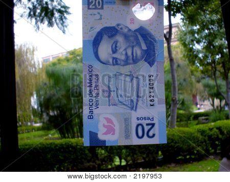 Twenty Mexican Pesos