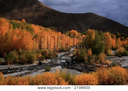 Wood River Autumn