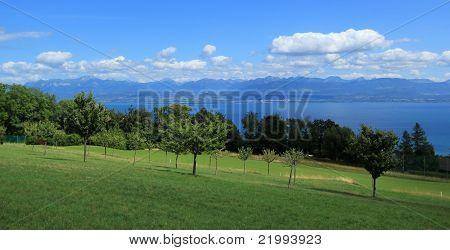 View Of Geneva Lake And Landscape Of Vaud Canton, Switzerland