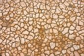 Dry soil in cracks. Concept of climate change poster