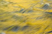 stock photo of spearfishing  - Fall colors reflecting in the flowing waters of Spearfish Creek in the Black Hills of South Dakota - JPG