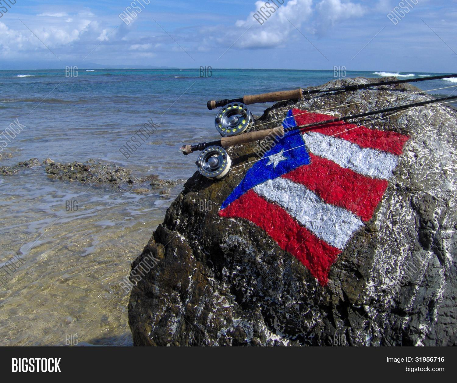 Saltwater fly fishing puerto rico image photo bigstock for Fly fishing puerto rico