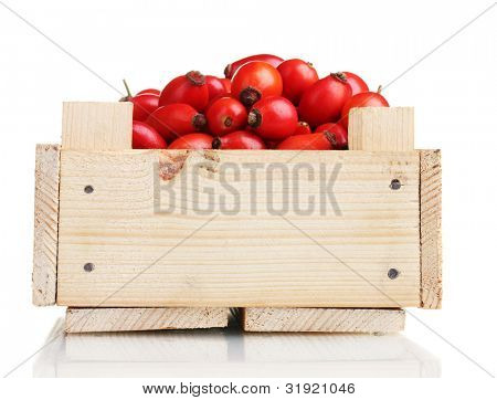 ripe briar in wooden box isolated on white