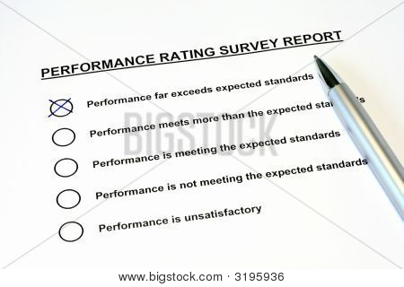 Performance Rating Survey Report