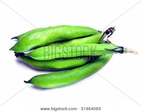 Bunch Of Broad Beans