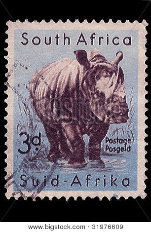 South Africa Postage Stamp White Rhino 1954