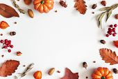 Autumn Composition. Dried Leaves, Pumpkins, Flowers, Rowan Berries On White Background. Autumn, Fall poster