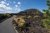 View Of Lava Butte In Lava Lands At Newberry National Volcanic Monument In Central Oregon, With Pave poster
