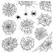 Cobweb. Halloween Monochrome Spiderweb And Dangerous Spider. Web Silhouettes For Creepy Horror Tatto poster