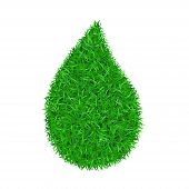 Drop Green Grass 3d. Green Droplet Liquid Isolated White Background. Bright Field, Nature Lawn. Mead poster