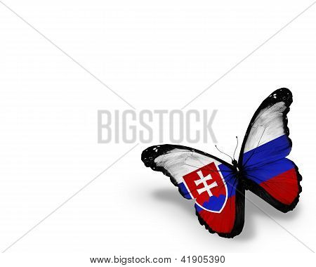 Mariposa de la bandera del eslovaco, aislado sobre fondo blanco