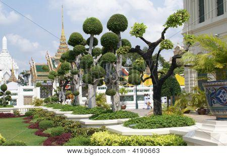 Trees. Garden Art. Garden Landscape. Garden Design