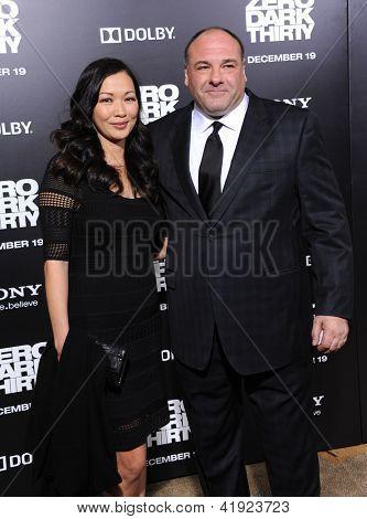 LOS ANGELES - 09 de dic: James Gandolfini & Deborah Lin llega a la Premier de LA