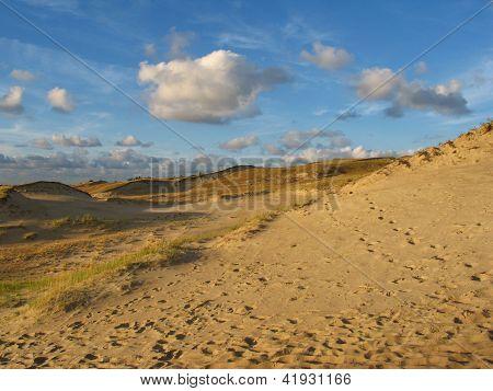 Dunes In Neringa