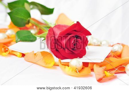 Romantic Scenery - Red Rose On Orange Petals With Pearls