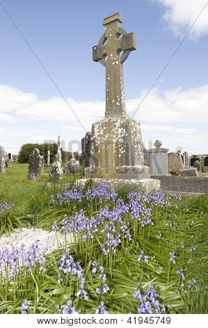Old Ancient Celtic Graveyard With Bluebells