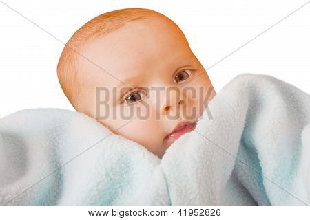 Cute Baby Isolated