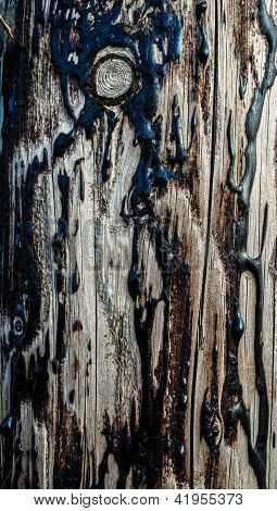 Wood and Tar Texture