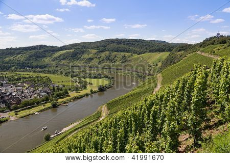 Aerial View Of German River Moselle Near Punderich