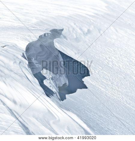 Avalanche Causer