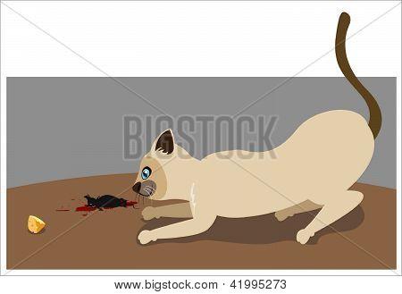 Killer-Katze