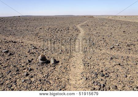 Morocco, Hamada Du Draa, Path Crossing