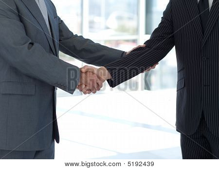 Handshake In Agreement