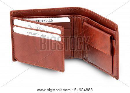 Brown Impressive Wallet