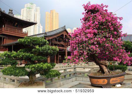 Chi Lin Nunnery, Hong Kong.