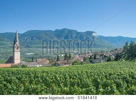 Tramin,South Tyrol,Italy