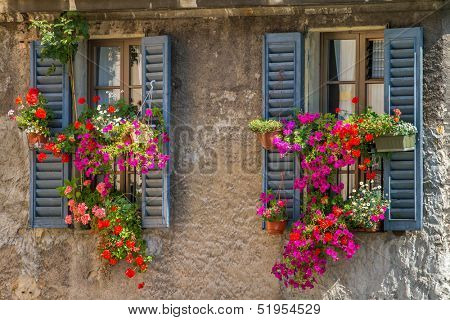 Vintage windows with open wooden shutters and fresh flowers