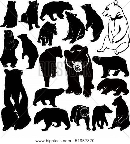 collection of animal bears