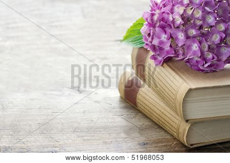 Old Books With Pink Flowers And Copy Space