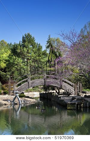 Japanese Water Garden Bridge