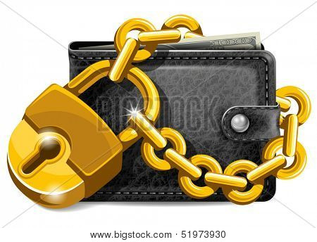 Wallet closed on the lock. Economy concept.